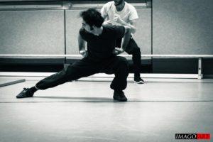 Tiefe Grundstände Kung Fu