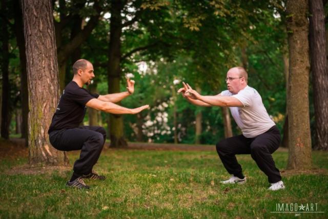 Kung Fu für Anfänger