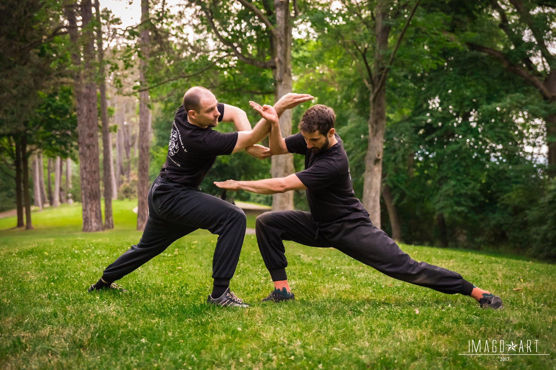 Kung Fu Freikampf